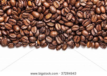 Coffe Stripe