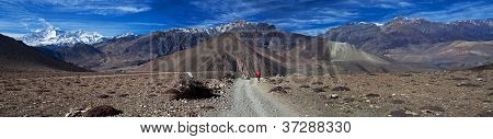 Trekker with backpack on the road