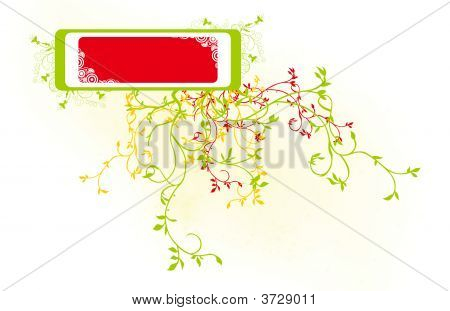 Congratulation Card Box