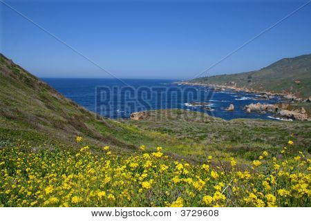 California\'S Central Coast In Spring