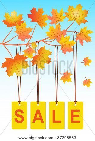 Autumn sale_