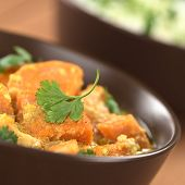 Sweet Potato Curry with Cilantro