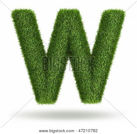 Natural grass letter W