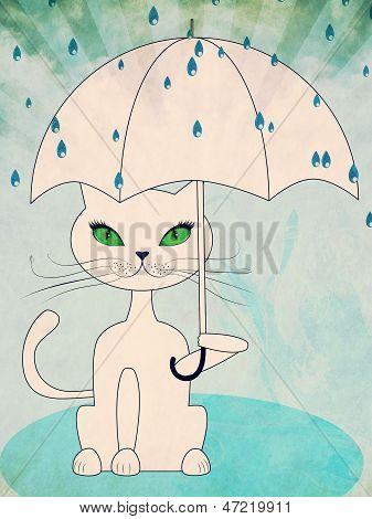 Cat Under Rain