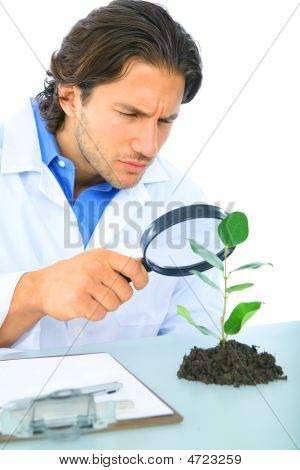 Serious Scientist Examine Green Life
