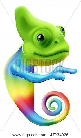 Rainbow Chameleon Pointing