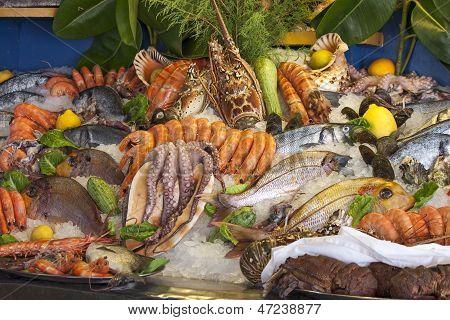 frutos do mar, crustáceos e peixes