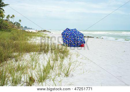 Umbrella, Florida