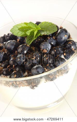 Yogurt With Blueberries And Chocolate Rasps