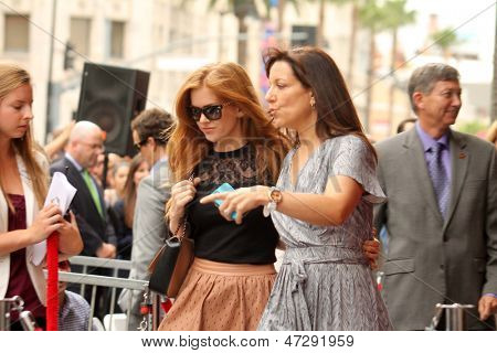 LOS ANGELES - JUN 24:  Isla Fisher at  the Jerry Bruckheimer Star on the Hollywood Walk of Fame  at the El Capitan Theater on June 24, 2013 in Los Angeles, CA
