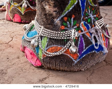 Decorated And Painted Elephant's Foot
