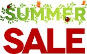 foto of ladybug  - Summer sale design - JPG
