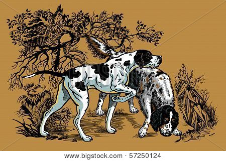 Hunting Dogs In Forest