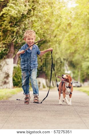 Boy Playing With Beagle Puppy