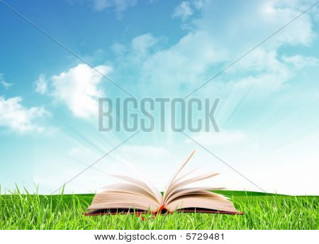 Book Under Sky