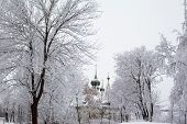 picture of uglich  - White trees and church in winter in Uglich