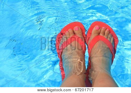 Female feet with flip flops in water