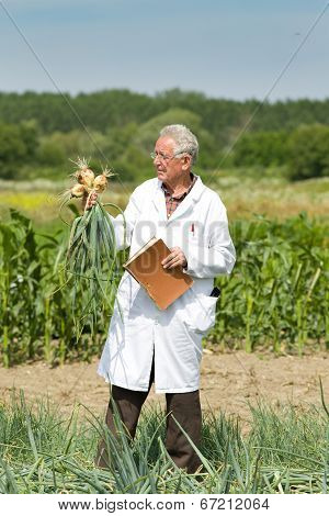 Agronomist With Onion