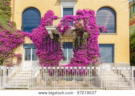 Apartment buildings in Monterosso, Italy. Residential outdoor landscape.