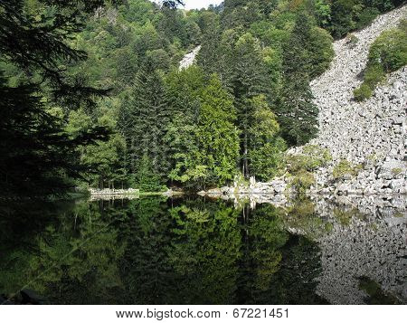Looking-glass Lake In The Vosges