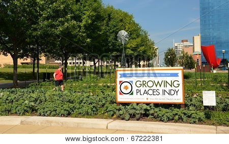 Growing Places Indy Urban Farm, Downtown Indianapolis