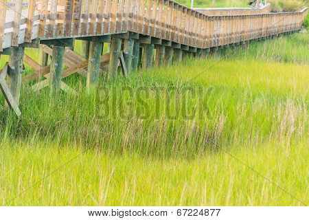 Bridge Over the Marsh