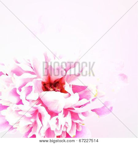 Peony, With Gradient Mesh, Vector Illustration