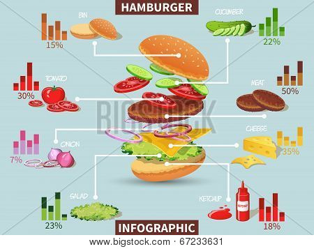 Hamburger ingredients infographic