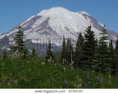Mount Rainer