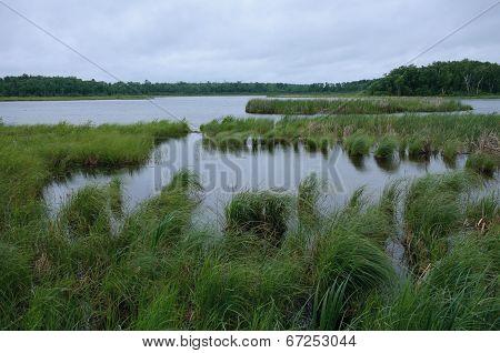 Rice Lake Near Breezy Point