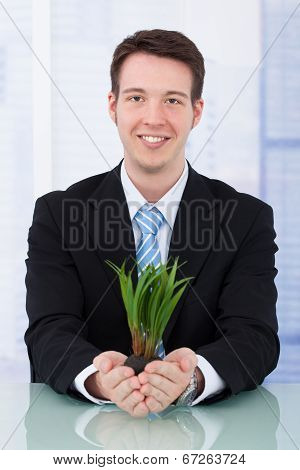 Confident Businessman Holding Saplings At Desk