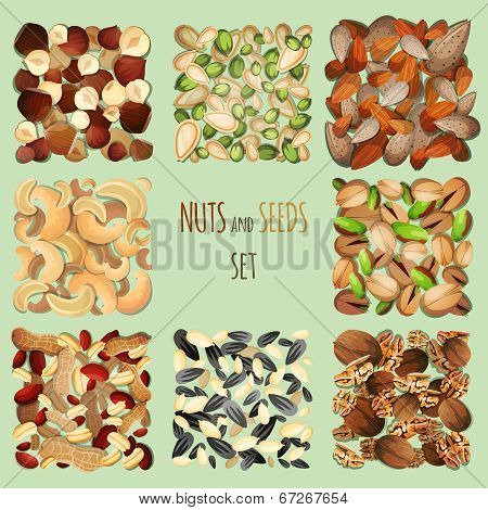 Nuts and seeds set