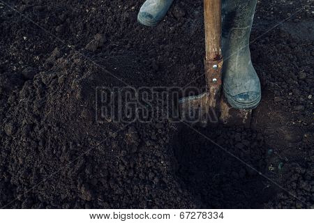 Man Digs A Hole