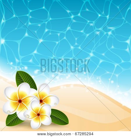 Vector illustration - Plumeria flowers on the beach