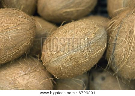 Scattering Of Coconuts In A Supermarket