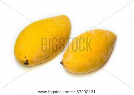 Yellow Barracuda Mango On White Background