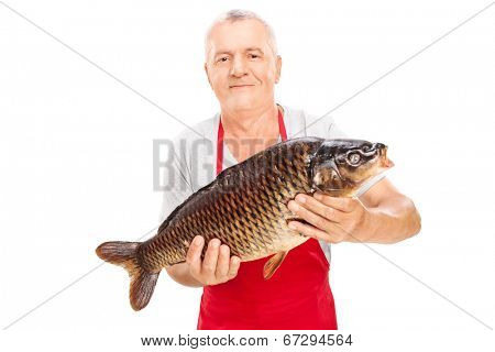Mature fishmonger holding a common carp isolated on white background
