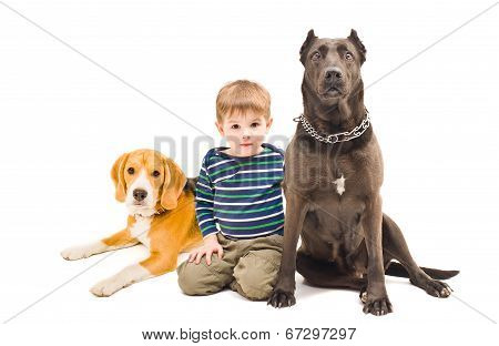 Beautiful little boy sitting with two dogs