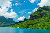 picture of french polynesia  - Paradise view of Moorea Islands Cook - JPG