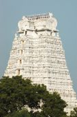 stock photo of trichy  - Sri Azhagiya Manavala Perumal Temple is a Divya desam temple situated in Urayoor inside Trichy in Tamil Nadu - JPG