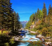 foto of coniferous forest  - Rapid mountain stream of coniferous forests - JPG