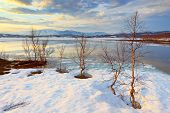 foto of laplander  - Landscape with the lake in polar Arctic Lapland - JPG