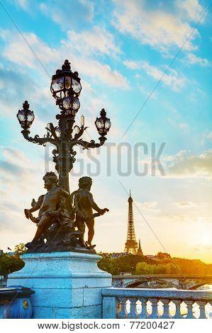 Lamppost At The Alexander Iii Bridge In Paris