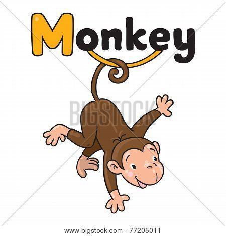Litle funny monkey on lians. Alphabet M