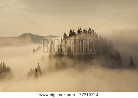 Amazing Mountain Landscape With Dense Fog. Carpathian Mountains.