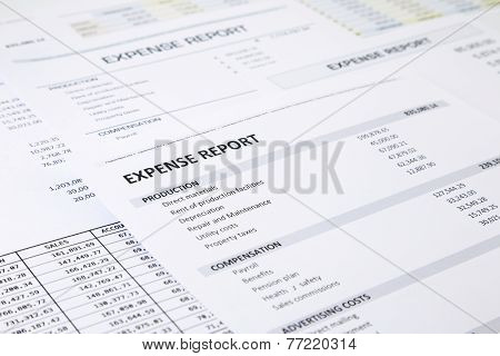 Business Expense Report