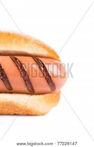 Hotdog with grilled sausage roll