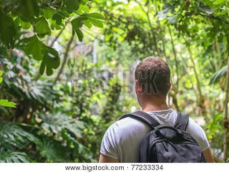 Tourist With Backpack In The Jungle. Space For Your Text.
