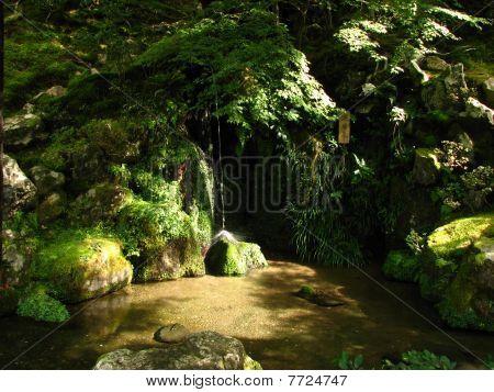Serene Japanese Garden
