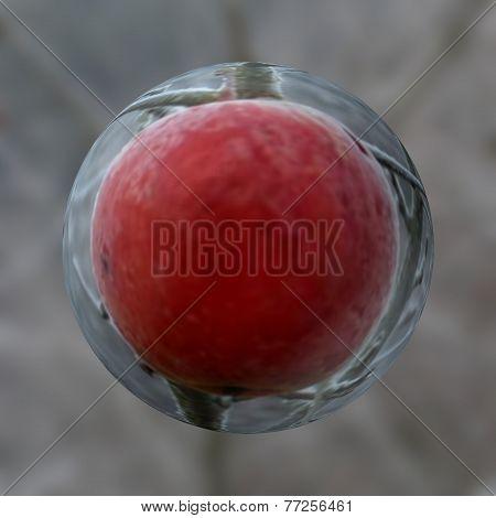 Frozen apple deformed with zoom
